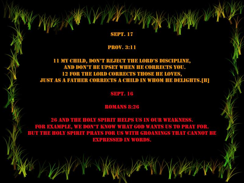 verse-set-4-sept-2014